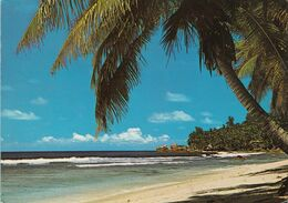 Seychelles Islands  Anse Fourmis . La Digue. Isola - Seychelles