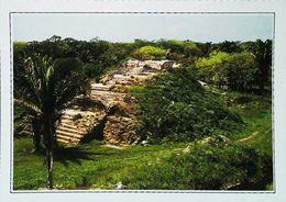 Belize  Altun Ha  Sanctuaire Maya  Années 80s - Belize