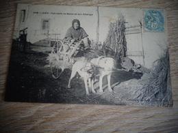 GIEN VOITURE A CHIEN FABRICANT DE BALAIS LOIRET 45 - Gien