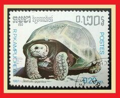 113.KAMPUCHEA 1987 USED STAMP TURTLES . - Kampuchea