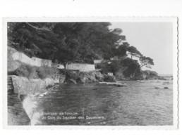 CPSM Photo 83 - Les Environs De Toulon - Un Coin Du Sentier Des Douaniers - Toulon