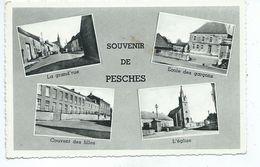 Pesche Souvenir De Pesches ( Carte Un Peu Abimée : Arrachage De Timbre -  Voir Les Scans ) - Couvin
