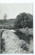 Petigny L'Eau Noire Et Le Pont Du Baty - Couvin