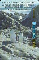 Bulgarien - Betkom B59 Antarctic Pinguin - Bulgaria