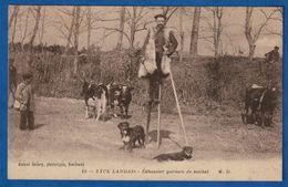 CPA 40 TYPE LANDAIS - Echassier Gardien De Vaches - Non Classificati