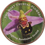 Monnaie, Somaliland, Shilling, 2019, Fleurs - Bumble Bee Orchidée, SPL - Somalië