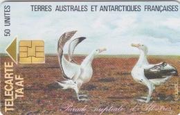 Télécarte 50U, Tirage 1500, Parade Nuptiale D'un Couple D'Albatros - TAAF - Terres Australes Antarctiques Françaises