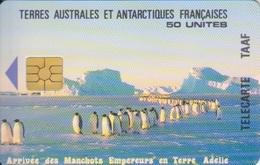 Télécarte 50U, Tirage 1500, L'arrivée Des Manchots Empereur En Terre Adélie - TAAF - Terres Australes Antarctiques Françaises