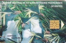 Télécarte 50U, Tirage 1500, Gorfous Sauteurs - TAAF - Terres Australes Antarctiques Françaises