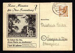 BERLIN Privat-Postkarte Von BAD EMS Nach Bergen - 27.11.52 - Mi.Bln.43 - Berlin (West)