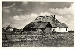 Nederland, TEXEL, Landschap Met Boerderij (1954) Ansichtkaart - Texel