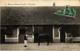 CPA Haras Du PERRAY - Un Etalon (102738) - Le Perray En Yvelines