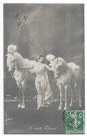 Cirque La Belle Fitoomb - Artistes