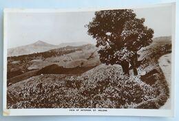 C. P. A. : SAINTE-HELENE , ST. HELENA : View Of Interior - Saint Helena Island