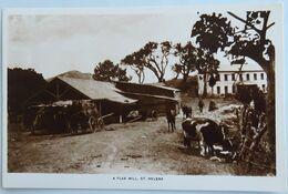 C. P. A. : SAINTE-HELENE , ST. HELENA : A Flax Mill - Saint Helena Island