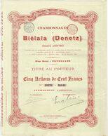 Ancienne Action - Charbonnages De Biélaïa (Donetz) - Titre De 1895 - Actions N°S 16836 à 16840 - Russie