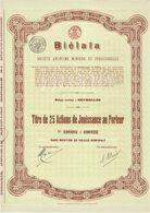 Titre Ancien - Biélaïa Société Anonyme Minière Et Industrielle (Donetz) - Titre De 1914 - Actions N°s 190401 à 190425 - Russia