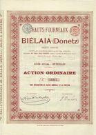 Ancienne Action - Hauts-Fourneaux De Biélaïa (Donetz) - Titre De 1899 - Titre N° 13527 - Russie