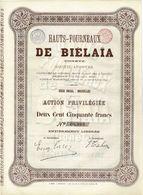 Ancienne Action - Hauts-Fourneaux De Biélaïa (Donetz) - Titre De 1899 - Titre N° 09.964 - Russie
