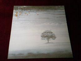 GENESIS  °  WIND & WUTHERING - Vinyl-Schallplatten