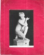 ROMA - ITALIE - Museo VATICANO - VENERE AFRODITE   - GIR - - Musées