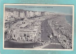 Small Post Card Of The Aquarium And Maderia Drive,Brighton,Sussex,England,K106. - Brighton