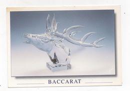 Cpa 54 BACCARAT Tête De Cerf En Cristal Massif - Baccarat