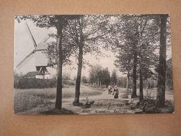 Westerlo Rond Westerlo 1912/Westerlo Around Westerlo 1912 - Westerlo
