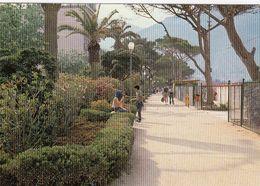 MONDELLO-PALERMO-PASSEGGIATA PEDONALE-CARTOLINA VERA FOTOGRAFIA- VIAGGIATA IL 19-5-1980 - Palermo