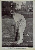 DEPORTE // SPORT. CRICKET. J. TREMONGER. NOTTINGHAMSHIRE - Cricket