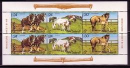 NEUSEELAND MI-NR. 906-908 POSTFRISCH(MINT) KLEINBOGEN GESUNDHEIT 1984 PFERDE SHETLAND-PONYS - Caballos
