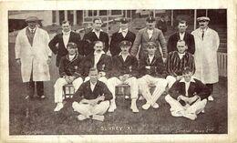 DEPORTE // SPORT. CRICKET. SURREY XI - Cricket