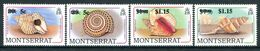 Montserrat 1991 Sea Shells Surcharges Set MNH (SG 843-46) - Montserrat