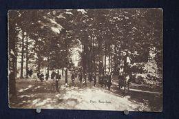 U-238 / Luxembourg - Bastogne, Pensionnat Notre-Dame Parc. Sous-bois / Circule 19? - Bertogne