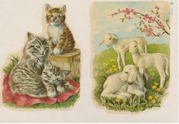 DECALCOMANIE Cadox Avec Motif: ANIMAUX N° 7331 Chatons, Agneaux... - Creative Hobbies