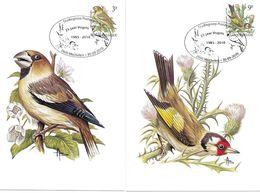 BUZIN Oiseau Grosbec & Chardonneret N° Yvert 2186 2187 Carte Postale 1er Jour 30/09/2010 - 2001-2010