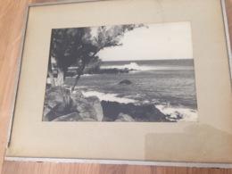 974 - La Réunion - ST LEU ? BOUCAN CANOT ? FILAOS ROCHERS - PHOTO AUTHENTIQUE  SOUS CADRE - Places