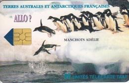 Télécarte 50U, Tirage 1500, Allo ! Manchots - TAAF - Terres Australes Antarctiques Françaises