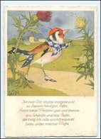 Y17093/ Bohatta-Morpurgo   Der Stieglitz AK Vogel 1935 - Vögel