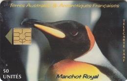 Télécarte 50U, Tirage 1500, Tête De Manchot Royal - TAAF - Terres Australes Antarctiques Françaises