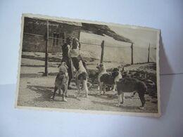 5397. AU GRAND SAINT BERNARD SUISSE VALAIS  CPSM FORMAT CPA 1950 PHOTOTYPIE CO LAUSANNE - VS Valais