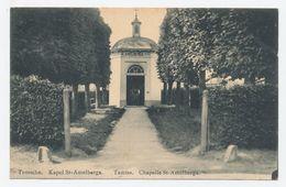 Tamise - Temsche - Temse : Kapel St-Amelberga - Temse