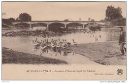 S10-40) AU PAYS LANDAIS - AU BORD DE L'ADOUR GARDIEN D'OIES - (EDITEUR BONHEUR  DAX - OBLITERATION DAX 1925 - 2 SCANS) - Dax