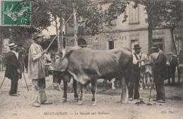 A24- 82) MONTAUBAN - LE MARCHE  AUX BESTAUX  - (TRES ANIMEE - BOEUS - MAQUIGNONS) - Montauban