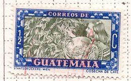 PIA - GUATEMALA - 1950 : Uso Corrente - Raccolta Del Caffè -  (Yv 343) - Guatemala