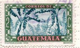 PIA - GUATEMALA - 1950 : Uso Corrente - Pianta Di Banano  -  (Yv 345) - Guatemala