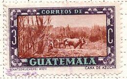PIA - GUATEMALA - 1950 : Uso Corrente - Canna Da Zucchero  -  (Yv 345) - Guatemala