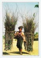 Birmanie Pagan Paysanne Birmane   Années   80s - Postales