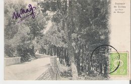 TURQUIE. CPA Voyagée Souvenir De Samos Le Pont De Malagar - Turkey