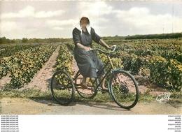 Photo Cpsm 17 ILE DE RE. Rétaise En Tricycle - Ile De Ré